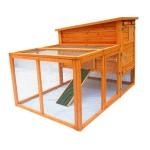 построить курятник на даче