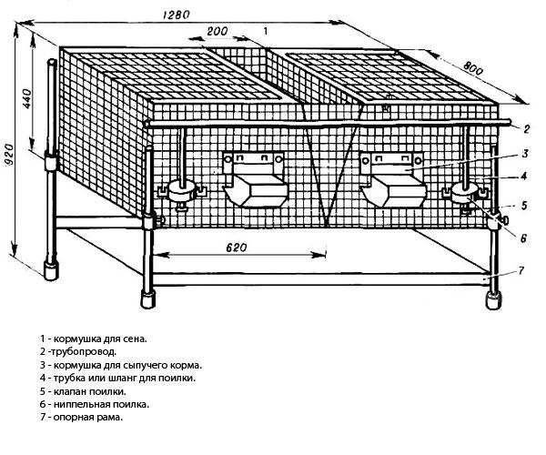 чертежи клеток из сетки