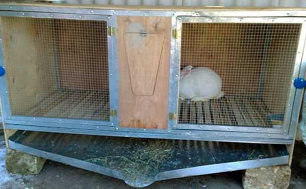 клетки для кроликов своими руками чертежи