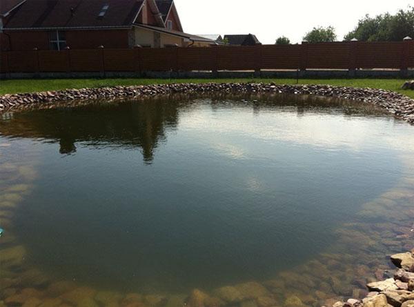 сделать пруд для разведения рыбы