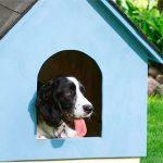 будка для собаки подробные чертежи